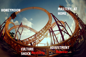 Cultural shock: the emotional roller-coaster ride